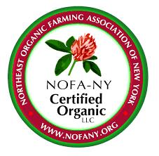 NOFANY Certificate
