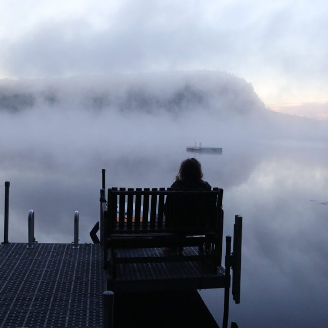 Meditation in the mist
